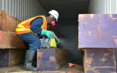 Fumigation Requirements for Exports to Australia and New Zealand for the Prevention of Brown Marmorated Stink Bug Infestation 2019-20